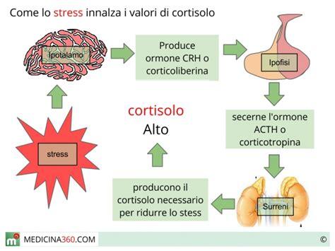stress e alimentazione dottore sono stressato mangio da fare schifo