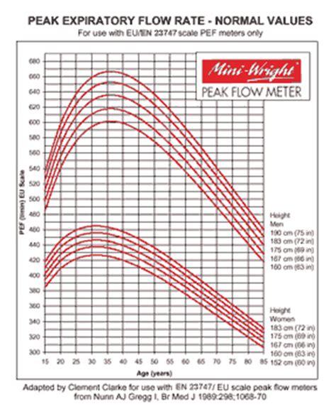 peak flow chart pediatric peak flow chart peak flow chart templates 7