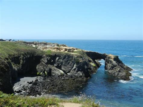 California Coast Mba Reviews by Seascape Mendocino Picture Of Mendocino Coast