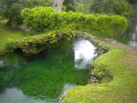 ruscello in giardino il comune foto di giardino di ninfa monumento naturale