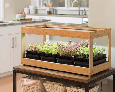 top   grow lights  indoor plants  hey love