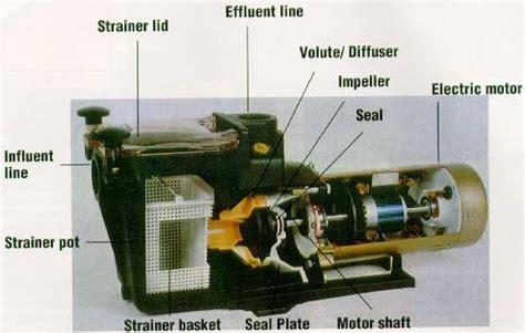 of arizona motor pool swimming pool pumps motor repair arizona az