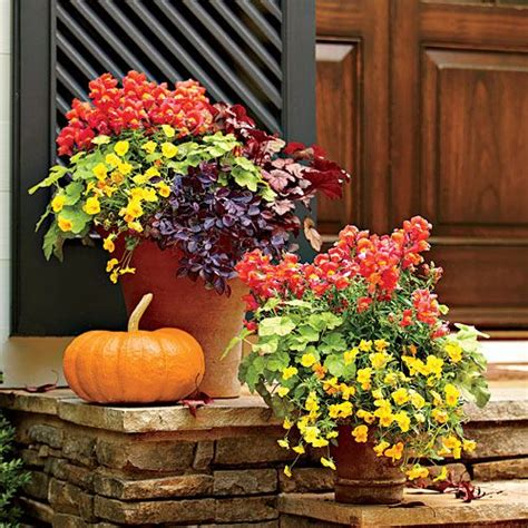 fall container garden ideas plant a vibrant fall container