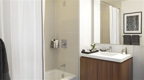 sophisticated luxury displayed by avenue montaigne luxury apartment bathroom college apartment bathrooms
