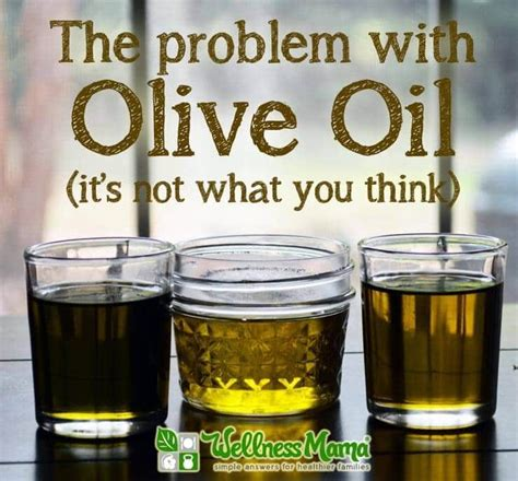 Olive Fatty Fatigue the problem with olive organic nature resources