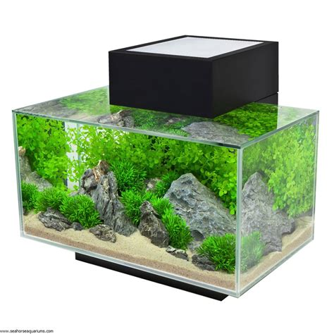 aquarium design edge fluval edge 23l black seahorse aquariums ltd