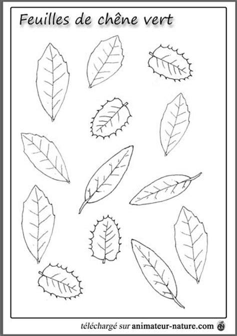Outils pédagogiques à imprimer sur le thème des feuilles