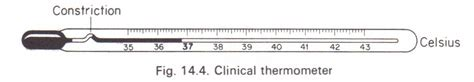clinical thermometer labeled diagram the clinical thermometer physics homework help physics