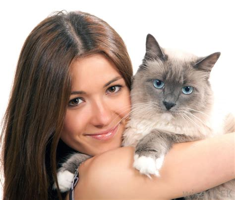 best for owners what are the best tips for pet owners with pictures