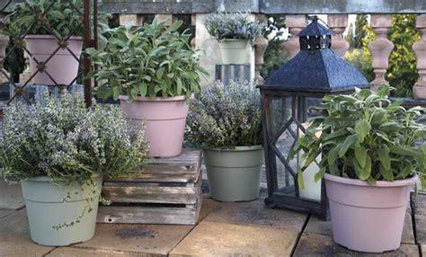shabby chic giardino come realizzare un giardino perfetto in stile shabby chic