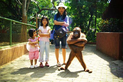 goa maharani zoo