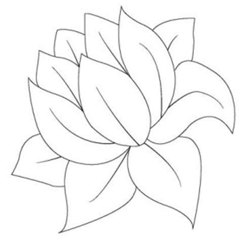 the gallery for gt frog lily pad coloring page