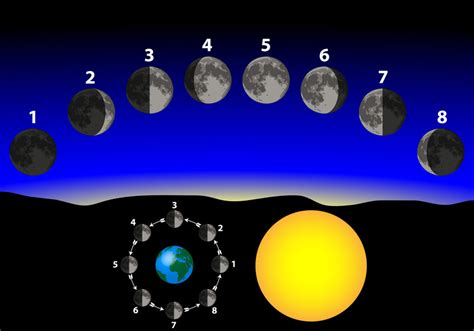 Room Arrangement App astrological moon phases time of birth astrology