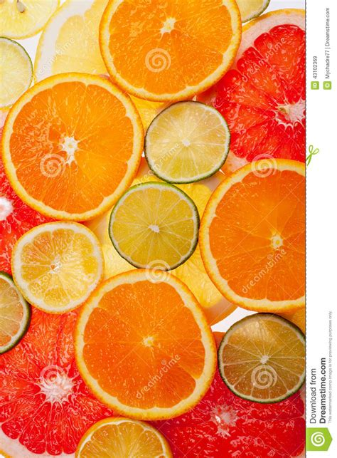 different colored background of different colored slices of citrus fruits