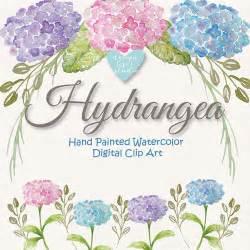 watercolor hydrangea flowers clipart by designloverstudio