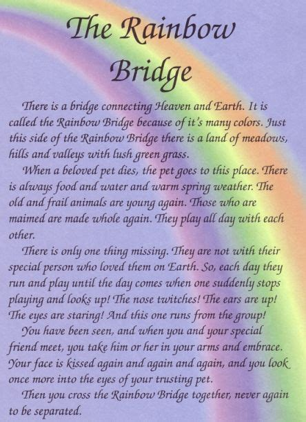 rainbow bridge poem 25 best ideas about rainbow bridge poem on rainbow bridge loss