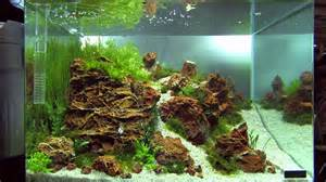 aquascaping tanks nano tanks of the aquascaping contest quot the of the