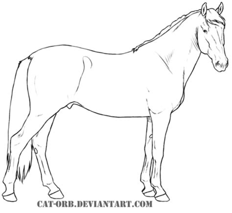 coloring pages of quarter horses 89 coloring pages of quarter horses quarter horse