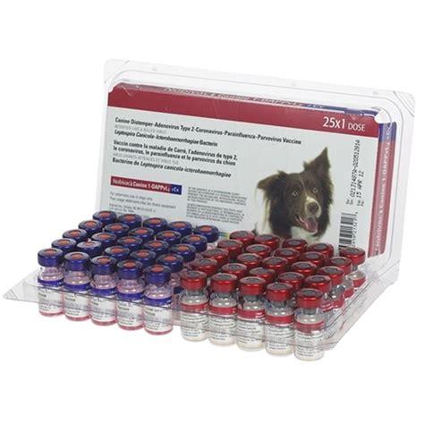 5 way puppy vaccine purchase nobivac canine 1 dappvl2 cv