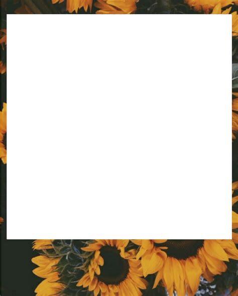 imágenes de tumblr overlays png overlays transparent polaroids
