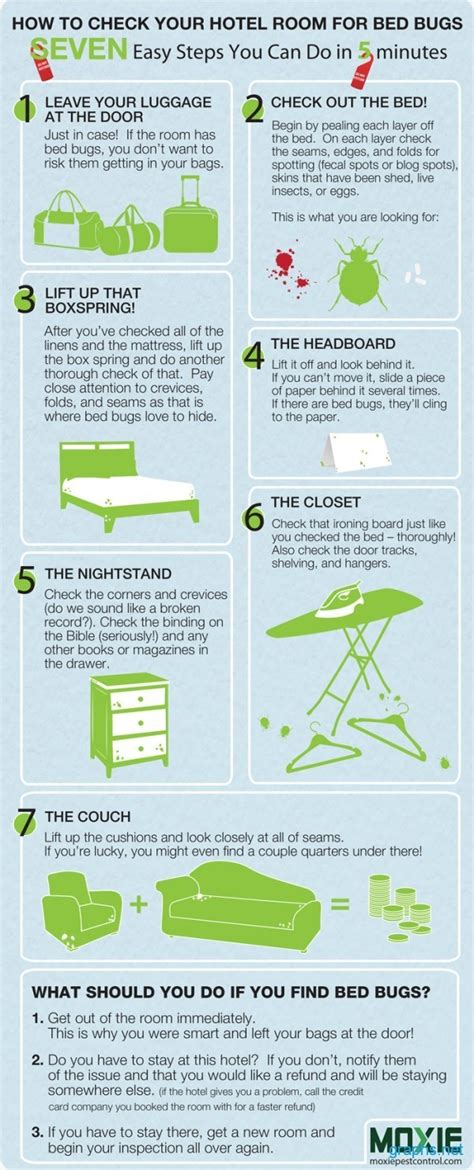 Can Bed Bugs Stay In One Room by How To Find Bed Bugs In Hotel Room Infographics
