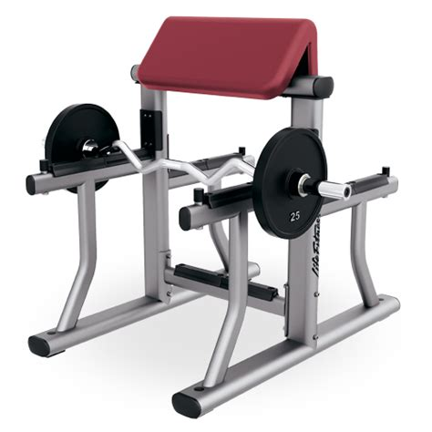 bicep curl with bench press arm curl bench sac fitness