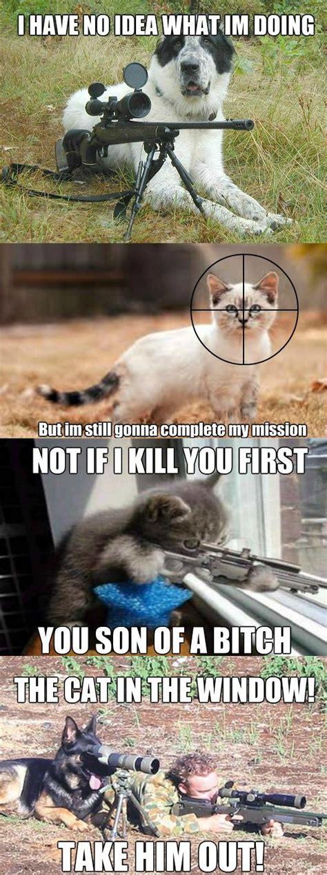Funny Dog And Cat Memes - meme dog vs cat
