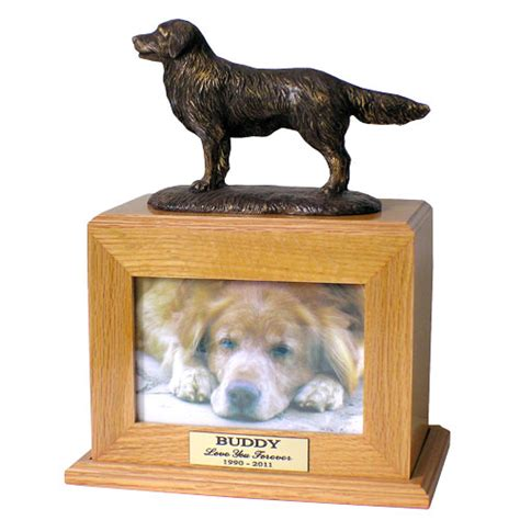 cremation for dogs golden retriever cremation urn