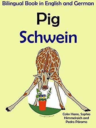 salome bilingual edition german and german edition books bilingual book in and german pig schwein learn