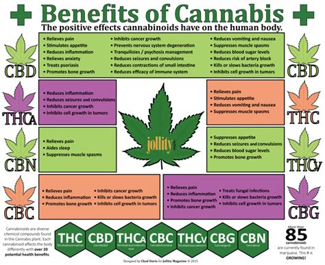 hemp cbd a primer on cannabinoids and cannabis medicine for better health books cannabinoids and their positive effects on the