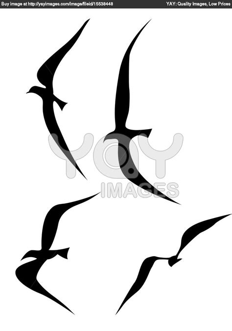 silhouette tattoos silhouette birds designs images