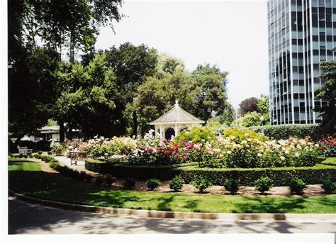 park san mateo san mateo ca central park garden san mateo photo picture image california