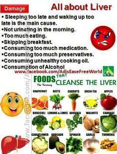 Detox Diet Diarrhea by Symptoms Of Sluggish Liver Headaches Urine Loss Of