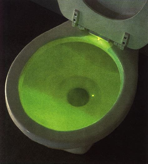 Lighted Toilet Bowl by Of 100 Oscar Viewing Features Johnny