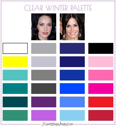 clear winter color palette best 25 clear winter ideas on winter color