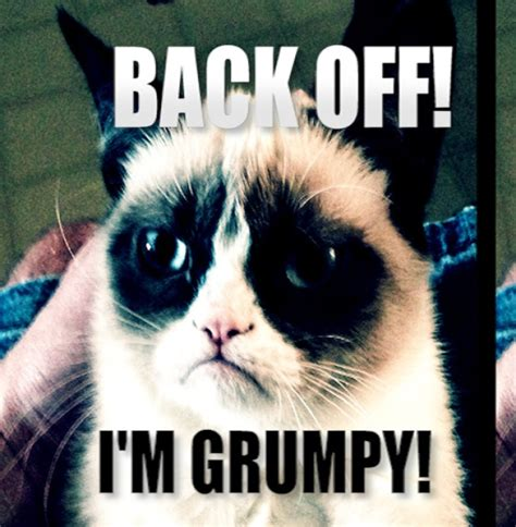 Original Grumpy Cat Meme - back off i m grumpy grumpy cat know your meme