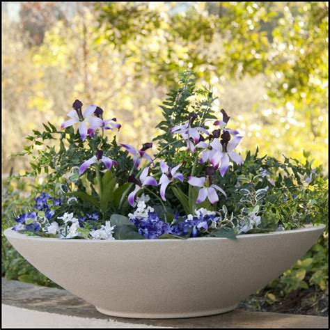 low bowl planters outdoor or indoor low bowl planters custom sizes styles