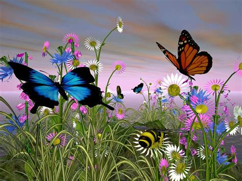 fiori colorati immagini 1000 idee su immagini di fiori su fotografia