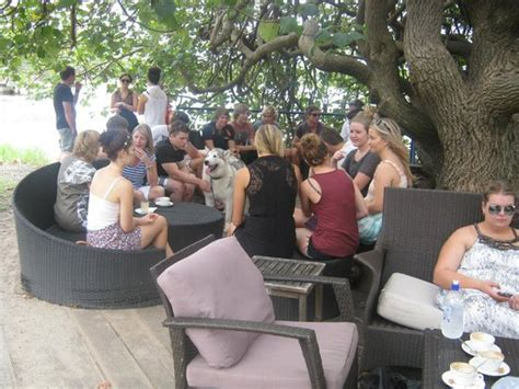 the boat shed cotton tree under the cotton tree family friend gatherings picture
