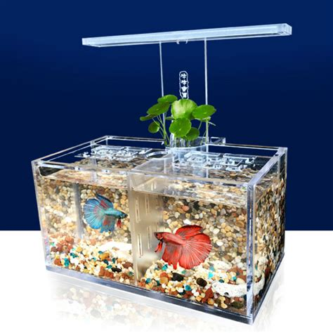 fish tank with filter and light large acrylic clear fish tank led light betta desktop
