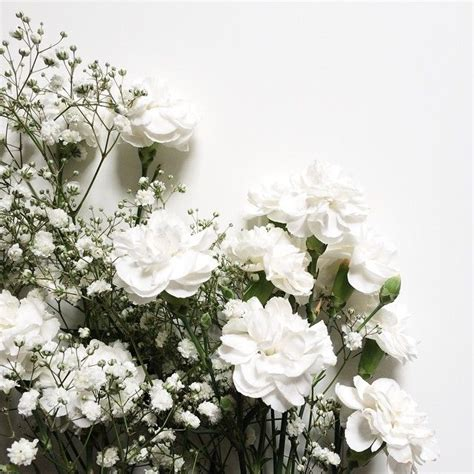 Bonia Bunga Silver maddieimwalle flowers blumen