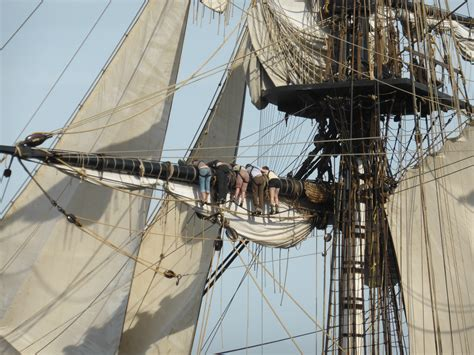hermione bateau taille fichier hermione voiles jpg wikip 233 dia