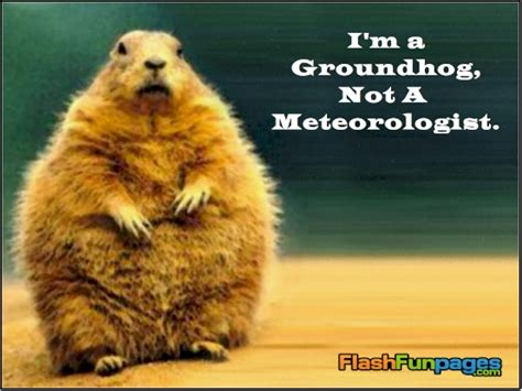 groundhog day jokes best photos of groundhog day happy groundhog