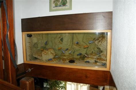 decoration aquarium maison d 233 coration aquarium fait maison encombrement place