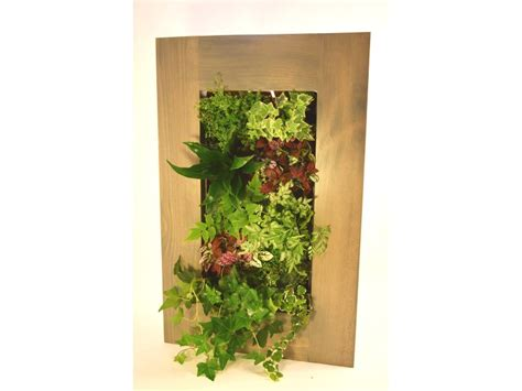 grovert living wall planter with barn wood frame