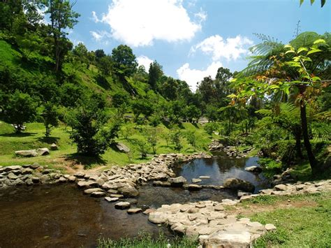 Panoramio Photo Of River At Cibodas Botanic Garden Cibodas Botanical Garden
