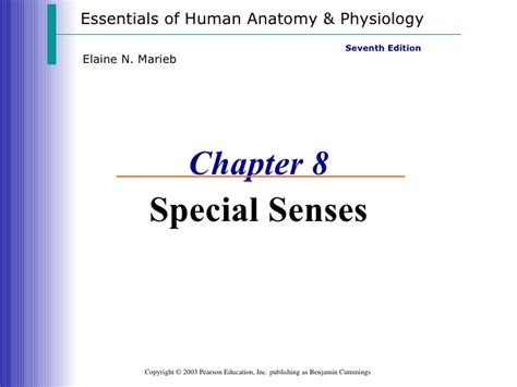 the special senses chapter 7 pages ppt download special senses