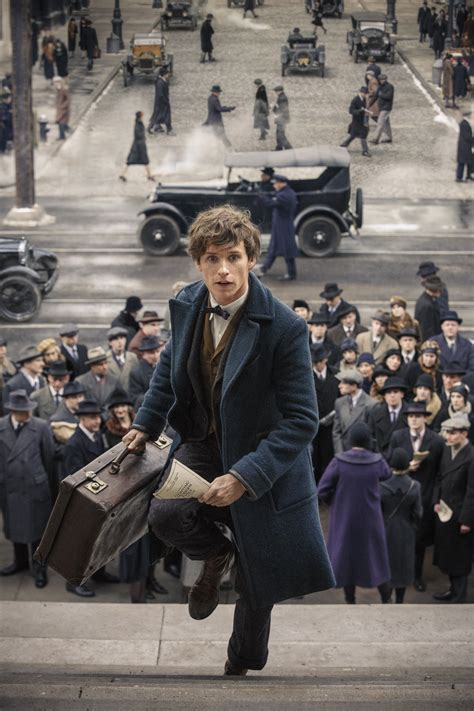 fantastic beast fantastic beasts and where to find them 43 things to know