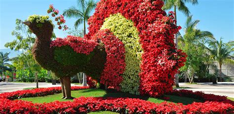 imagenes jardines de mexico eluniversal com mx destinos jardines de m 233 xico