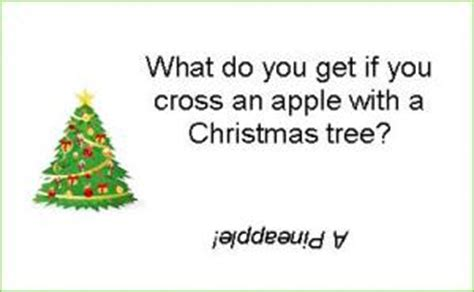 when do you get a tree 28 images cracker jokes kappit